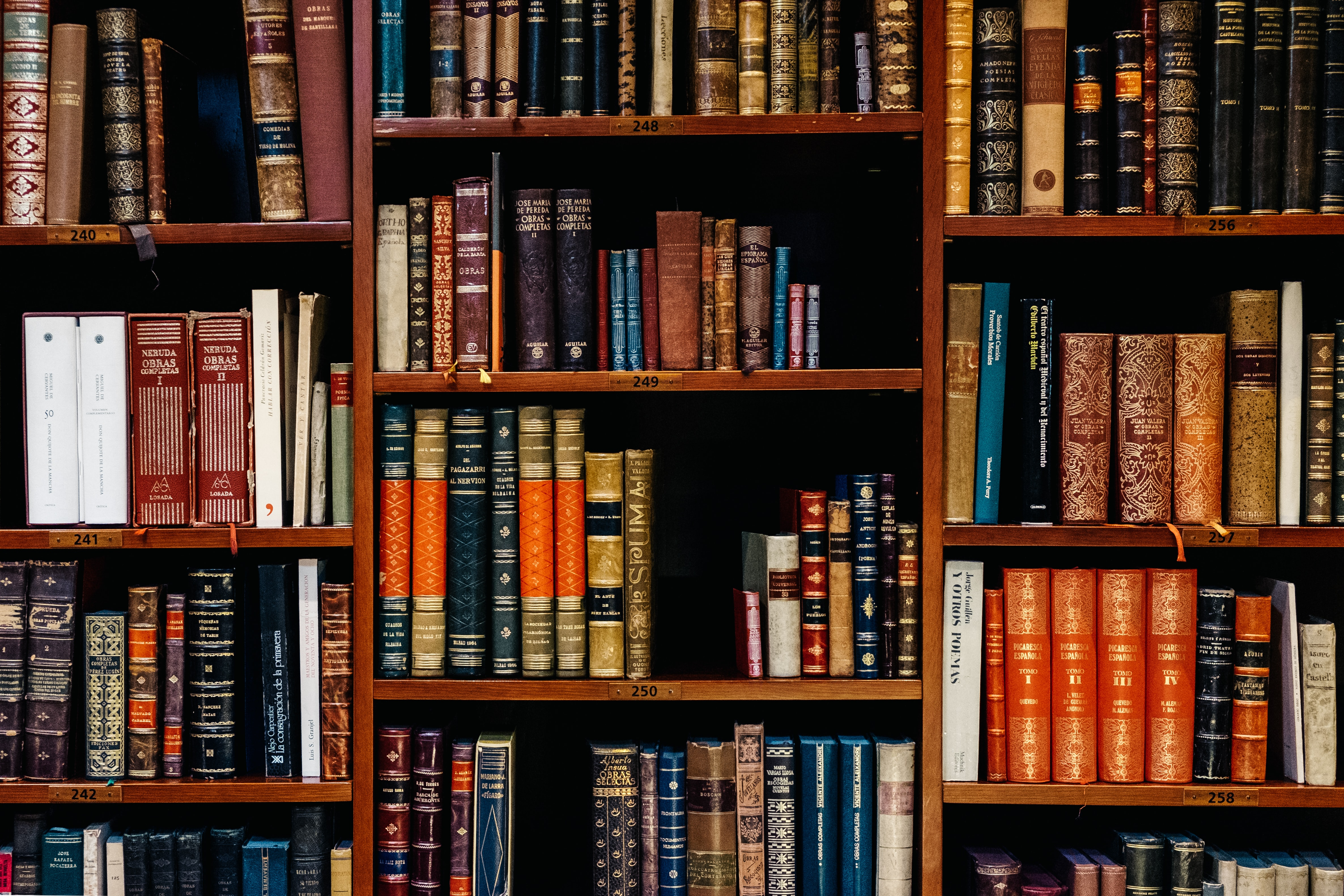 Curate your Zoom Bookcase: 10 books that should be in there and 10 that shouldn't